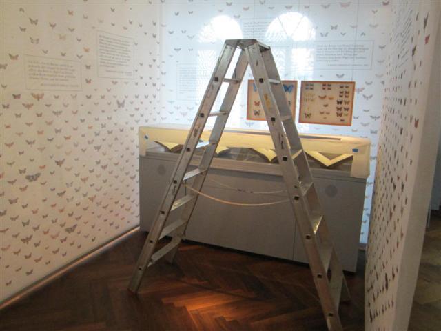 historisches museum frankfurt: die Leiter bei Gerning