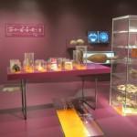 historisches museum frankfurt: vorarlberg museum, bregenz, Ausstellung Römer oder so