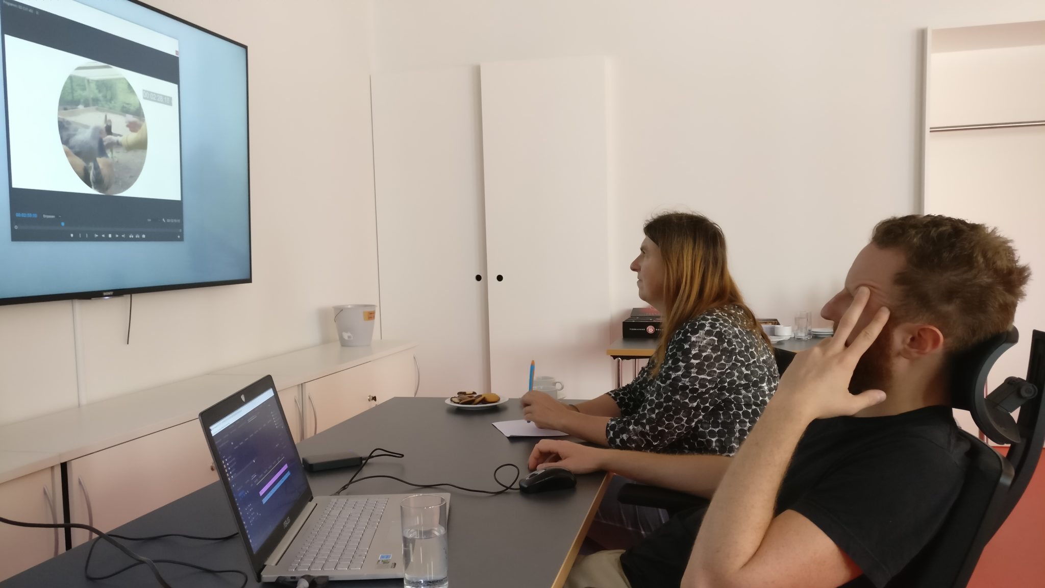 Editing consulting with Grüne Soße groupe