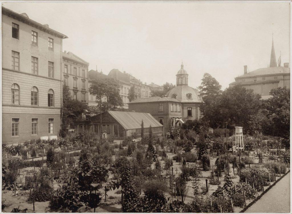 schwarz-weiss-Foto auf einen bepflanzten Garten und Gebäude