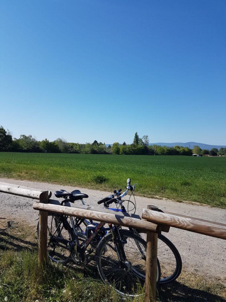 Die Hälfte des Bildes nimmt ein wolkenloser Himmel ein. Darunter ein grünes Band aus saftigen Wiesen und Bäumen in der Ferne. Im Vordergrund des Bildes lehnen zwei Fahrräder an einem Holzzaun.