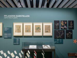 Blick in die Ausstellung, an der Wand hängen vier Bilder von Elisabeth Schultz